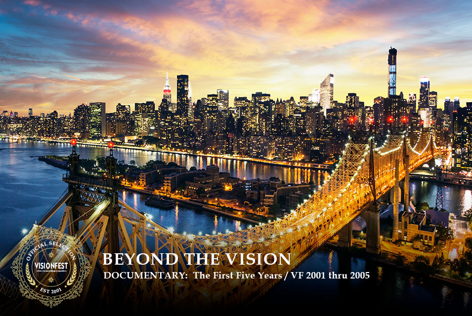 Beyond the Vision